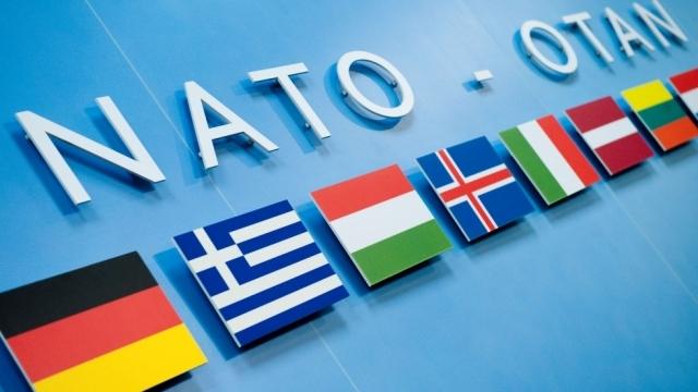 NATO mecbur kalırsa Türkiye'yi savunacak