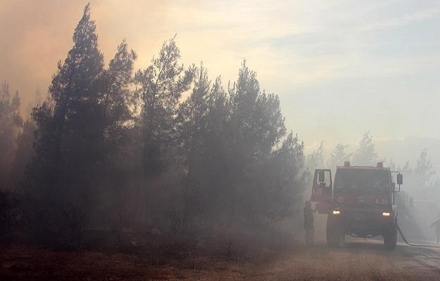 Antalya'da hızla büyüyen orman yangını
