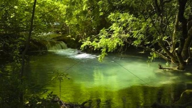 Avrupa suları kimyasal madde dolu