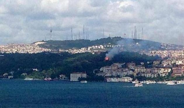 Boğaz'daki Fethipaşa Korusu'nda yangın