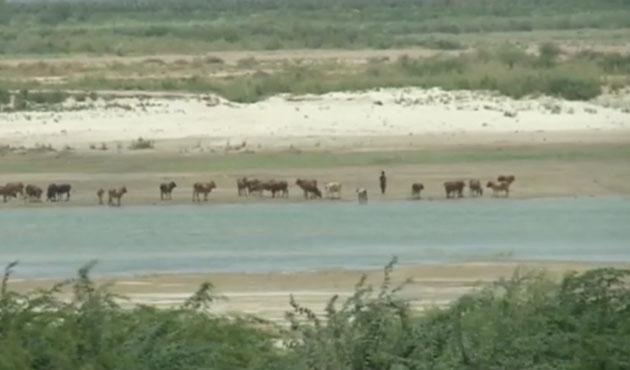 Pakistan'da deniz yükseldi içme suyu tehlikede