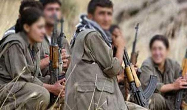 İki PKK'lı silahlarını bırakarak teslim oldu