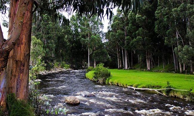 Ekvador nam memleket