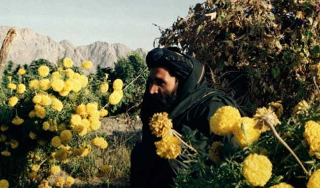 Taliban Molla Ömer'in öldüğünü onayladı