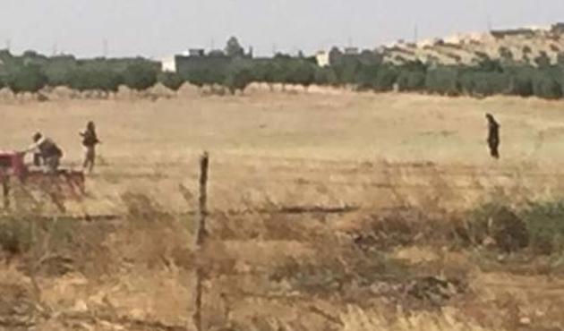 IŞİD Cerablus'ta hendek kazmaya devam ediyor
