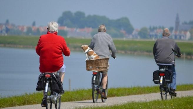 Çalışan yaşlı Almanların sayısı giderek artıyor