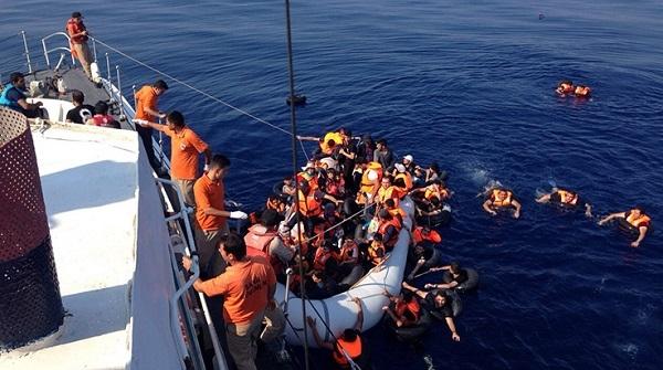 4 günde 2 bin 727 kaçak kurtarıldı