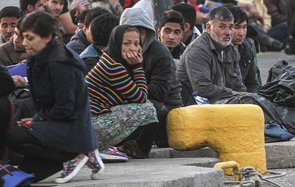 7 bin göçmen Sırbistan'a ulaştı