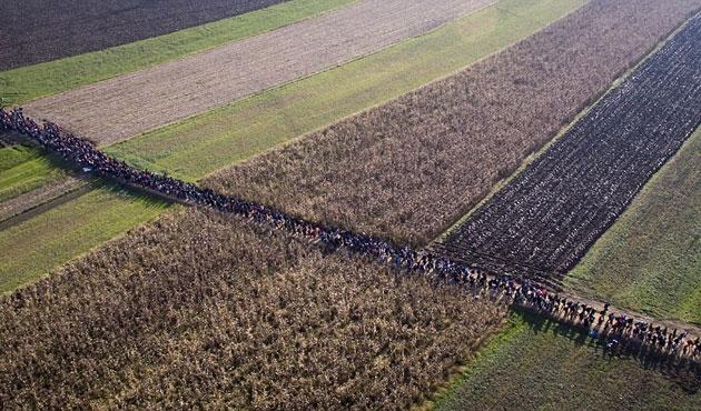 Slovenya'ya iki haftada 120 bin sığınmacı girdi