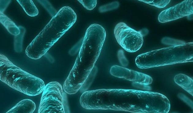 Tıpta antibiyotik devri sona erebilir