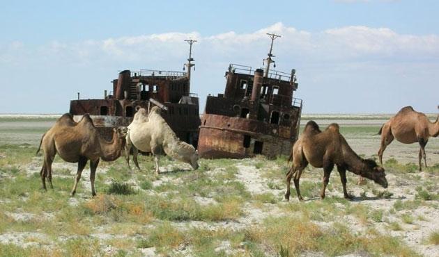 Aral Gölü zehirli çöle dönüştü