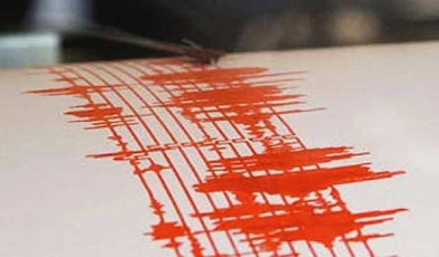 Fethiye'de 4 şiddetinde deprem