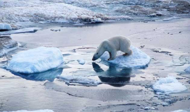 İklim anlaşması AB ülke meclislerine geliyor
