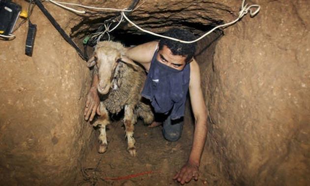 Mısır Gazze'nin iki tünelini daha yıktı