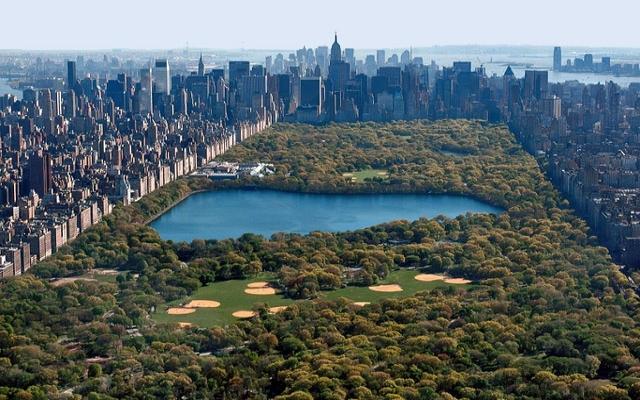 Central Park, siyahilerden gasp edilerek yapılmış