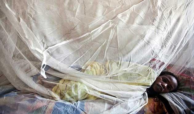 Yemen'de sıtma tehlikesi büyüyor
