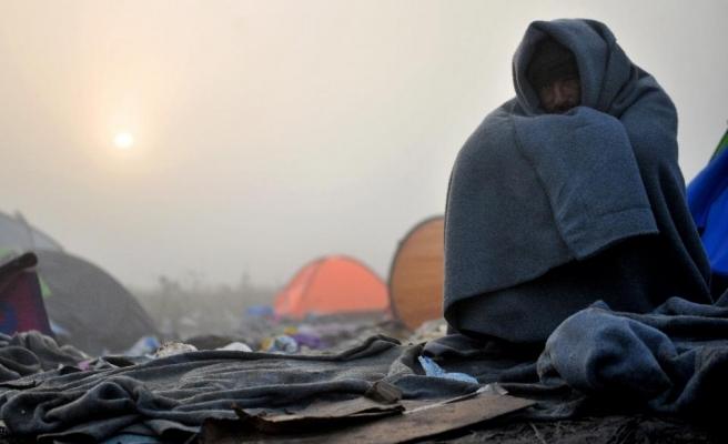 Bulgar sınırında sığınmacılar donarak öldü
