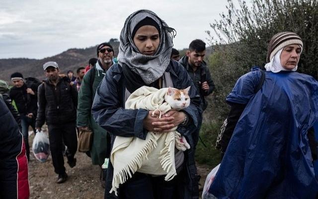 Ege Denizi'nde 42 göçmen yakalandı