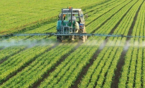 Türkiye'de tarım üretimi bu yıl artacak