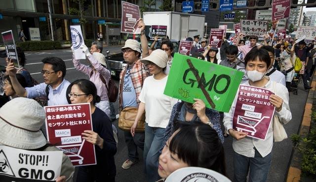 Japonya'da GDO protesto edildi