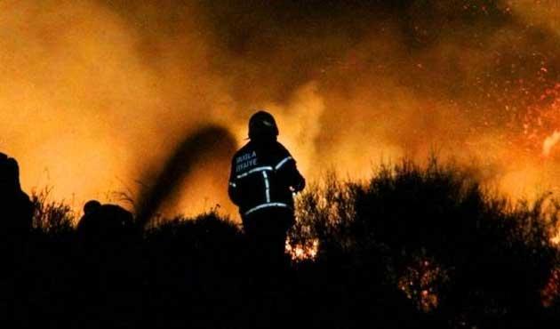 Bodrum'da 10 hektar makilik alan kül oldu