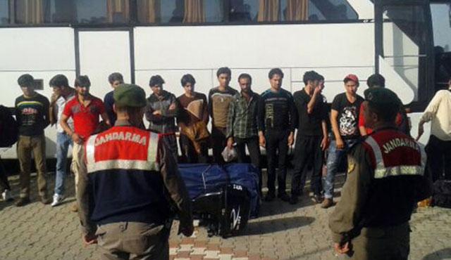 Edirne'de 16 göçmen yakalandı