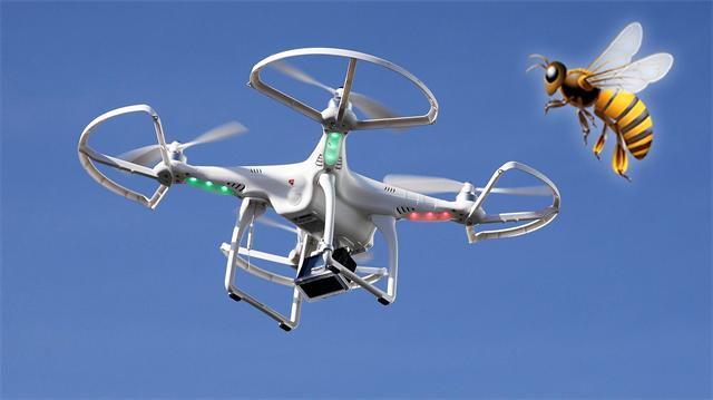 Drone'lar yönünü eşek arıları ile bulacak