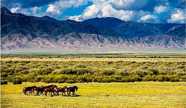 Kazakistan'da arazi reformu çalışmaları başladı
