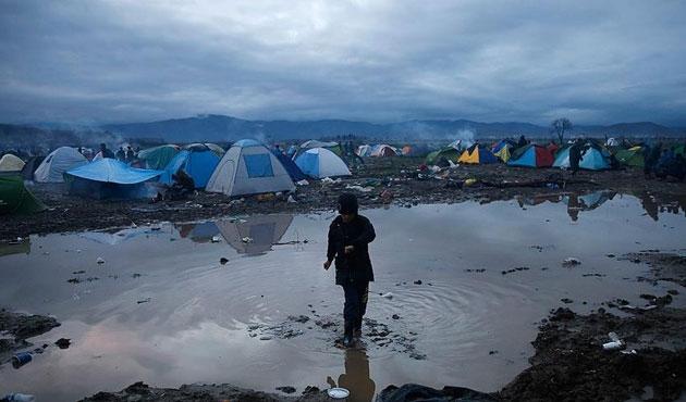 Sığınmacıların yüzde 40'ı Arap ülkelerinden