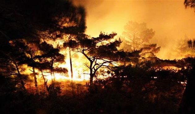 Kazdağları'nda büyük yangın