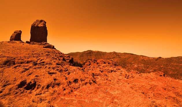 Mars yüzeyinde böcek var iddiası