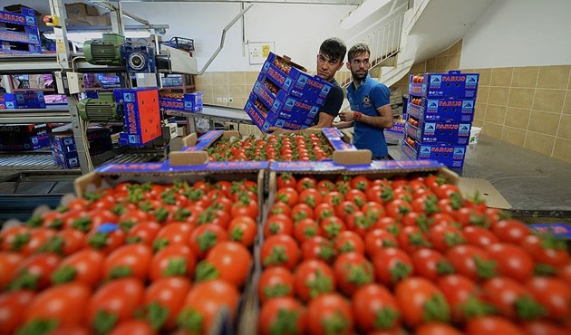 Rusya'dan yaş sebze için ilk talepler