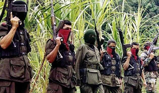 FARC militanları artık turist rehberi