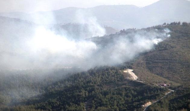 Rejim güçleri saldırdı, ormanlar iki gündür yanıyor