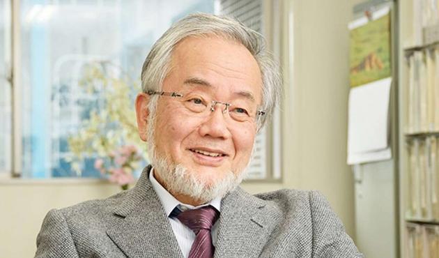 Nobel Tıp Ödülü Japon Ohsumi'nin