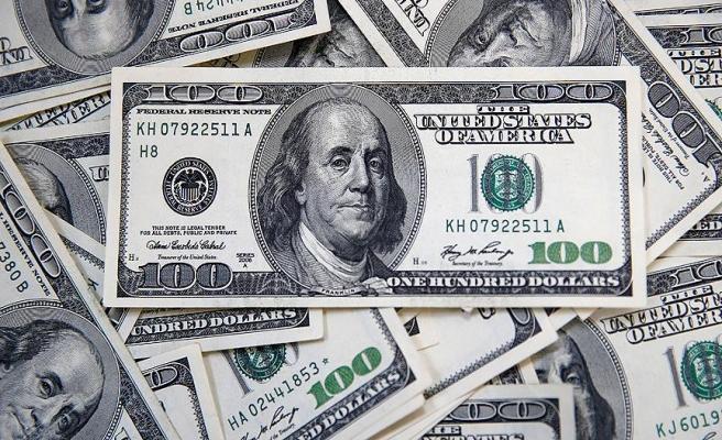 Dolar/TL 'Yellen' ile rekor tazeledi