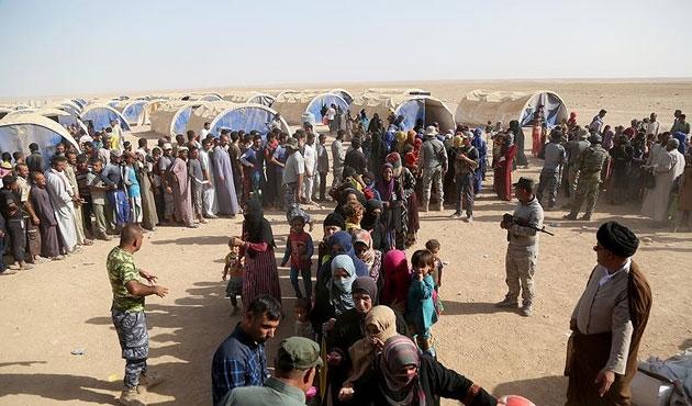 Irak Musul'dan göçler için 50 bin çadır hazırladı