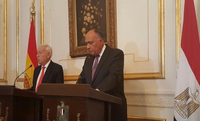 İspanya Dışişleri Bakanı Margallo Mısır'da