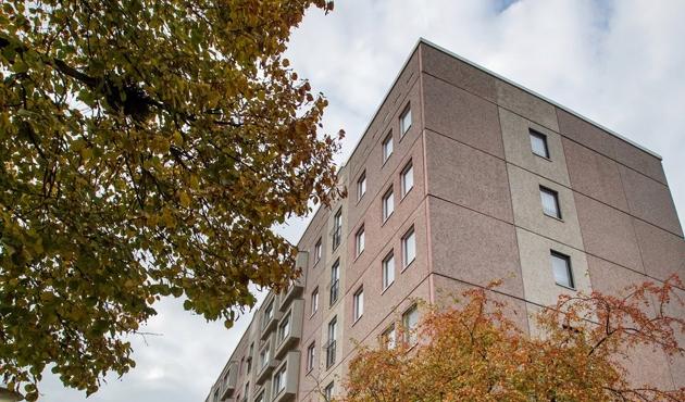 Almanyadaki mülteciye 'intihar tezahüratı'na soruşturma