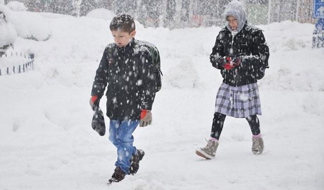 Gümüşhane ve Tunceli'de kar tatili