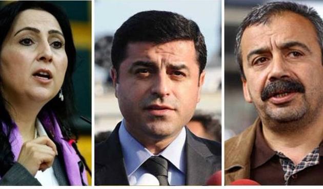 HDP Operasyonu'na dünyadan tepki