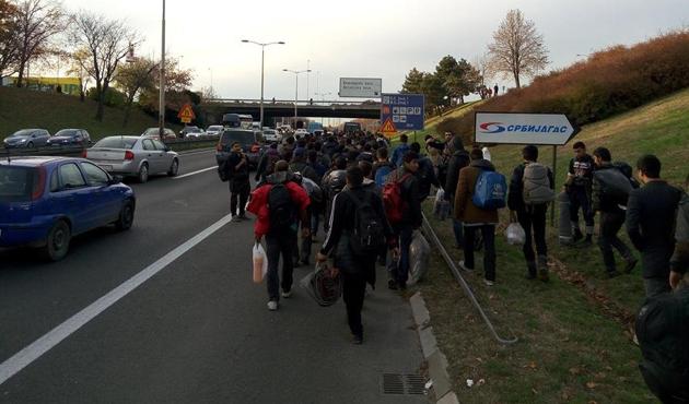 Mülteciler Hırvatistan'a yürümeye başladı