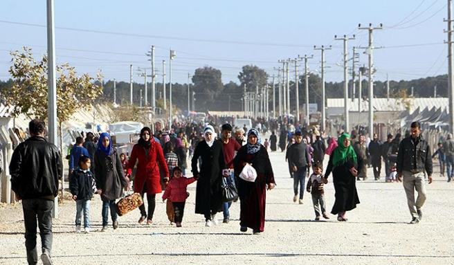 Suriyeli mültecilerin kurduğu şirket sayısı bin 494'e ulaştı