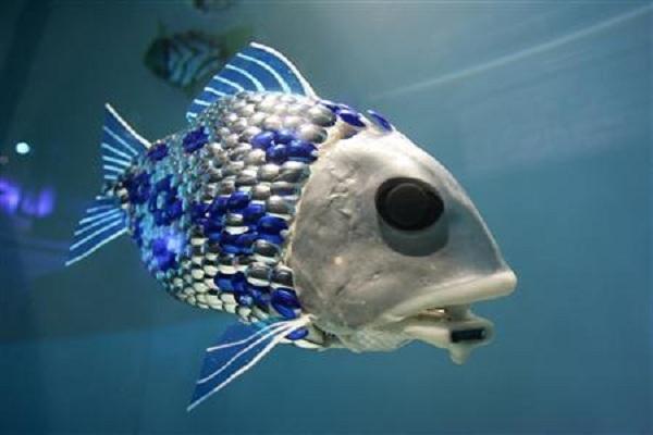 Yapay zekaya sahip balık üretildi