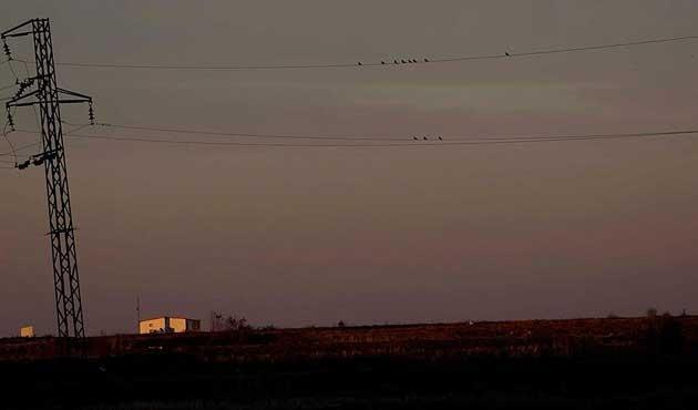 Trakya'da kuşları elektrik çarpmayacak
