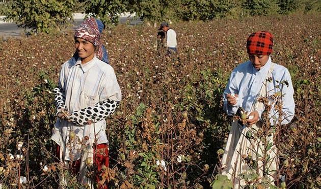 Türkmenistan'da sahte hasat raporuna gözaltı