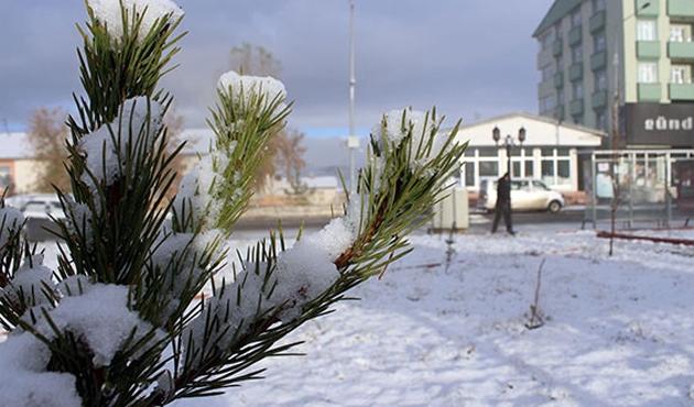 Erzurum ve Kars'ta kar yağışı devam ediyor