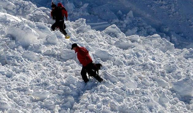 Japonya'da kayak merkezine çığ düştü: 40 yaralı