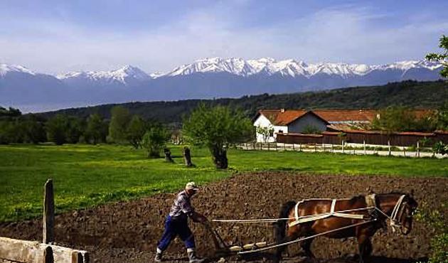 Bulgaristan'da mevsimsel çalışmak için şartlar