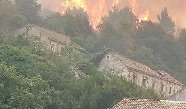 Hırvatistan'da orman yangını istifa getirdi